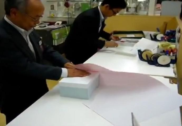 Japanske kućne video snimke