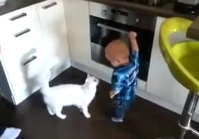 video uska maca