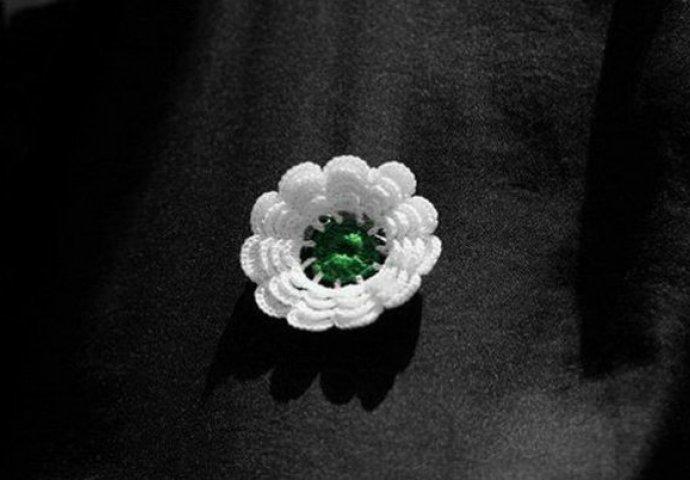 Slikovni rezultat za cvijet srebrenice