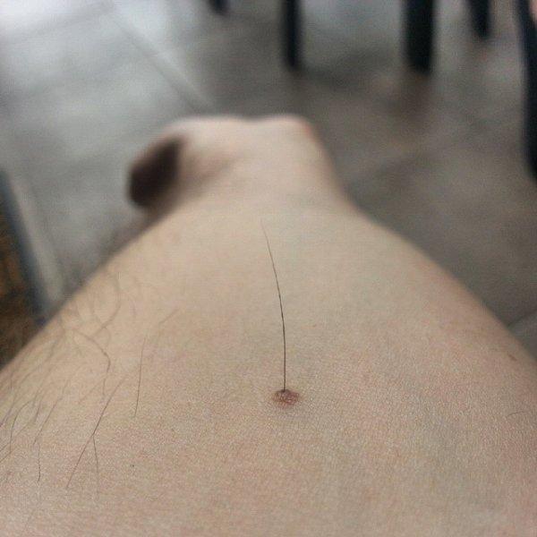 velika dlaka squirting maca jebeni